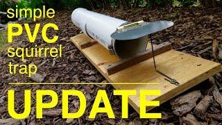 How to make ● a HUMANE PVC squirrel trap ●  U P D A T E  !!!