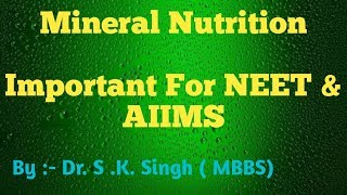Mineral Nutrition In Plants For NEET , AIIMS & CBSE Class 11th Biology ( Part 1 ) By- Dr. S.K.Singh