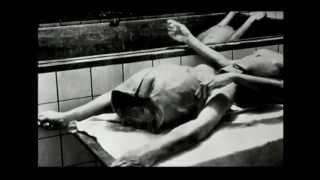 getlinkyoutube.com-Auschwitz - Experimentos Médicos - Legendado