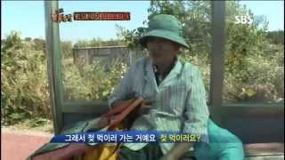 getlinkyoutube.com-TV 동물농장 586회 #1