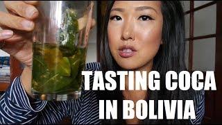 TASTING COCAINE (COCA) LEAVES IN BOLIVIA!