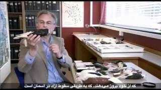 getlinkyoutube.com-مستندی در مورد نظریه تکامل چارلز داروین