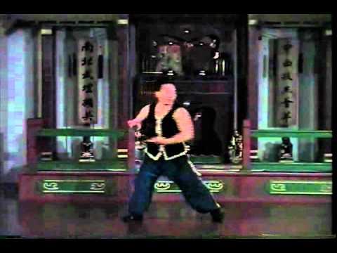 Hasayfu Hung Kuen - Snake Sample