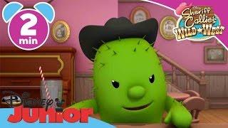 getlinkyoutube.com-Sheriff Callie   Kit Cactus   Disney Junior UK