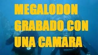 getlinkyoutube.com-★MEGALODON GRABADO CON UNA CAMARA