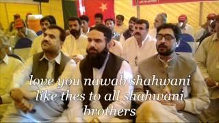 getlinkyoutube.com-SHANDAR shahwani new song