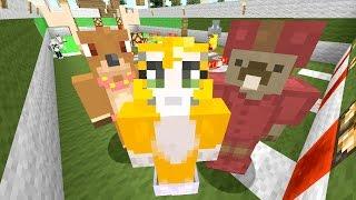 getlinkyoutube.com-Minecraft Xbox - Racestone [468]
