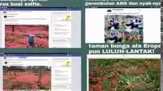getlinkyoutube.com-Tragedi Taman Bunga Pathuk Wonosari  Gunung Kidul Jogjakarta 2015