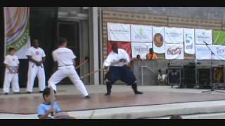 Elite Training Center NC Folk Fest Demo, Hakim Isler, To Shin Do ninjutsu, Ninjutsu