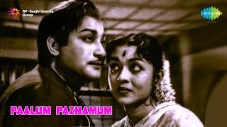 Paalum Pazhamum | Ponaal Pogattum song