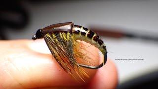 getlinkyoutube.com-Tying the Ammonite Nymph with Davie McPhail