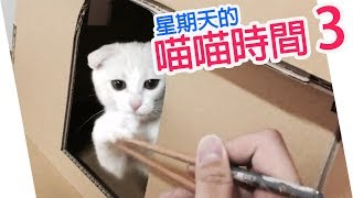 getlinkyoutube.com-【配音】星期天的喵喵時間(3)-YUI的筷子逗貓秀!