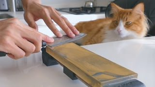 getlinkyoutube.com-Sharpening a $1 knife