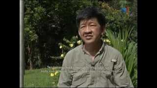 getlinkyoutube.com-Sabah 4x4 Deramakot 2013 Ep1