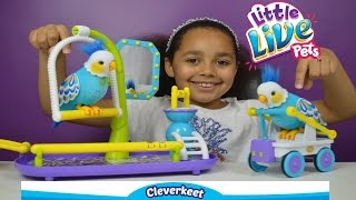 Little Live Pets Cleverkeet Parrot | Kids Toy Review | Toys AndMe