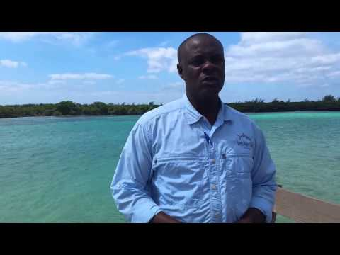 Shervin Tate on Proposed Aragonite Mining