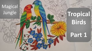 getlinkyoutube.com-MAGICAL JUNGLE | Color Along of the Tropical Birds - Part 1 |  Coloring Book By Johanna Basford