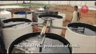 نظام الزراعة المائية Aquaponic system