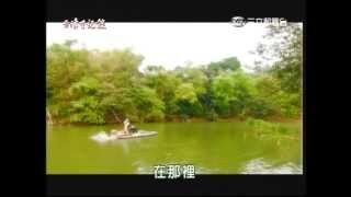 getlinkyoutube.com-台灣亞馬遜河的淡水鯨魚