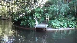getlinkyoutube.com-なかなか面白い!ジャングルクルーズの船長さん Jungle Cruise tokyodisney