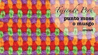 getlinkyoutube.com-Cómo tejer el punto moss o musgo en varios colores a crochet... muy fácil!