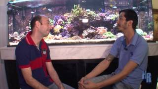 getlinkyoutube.com-Help Reef entrevista!