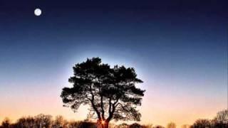 getlinkyoutube.com-Van Morrison - Here Comes The Night
