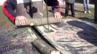 Dzajin cjepac II-Bosanian Krajina Splitter