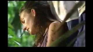 getlinkyoutube.com-Survival in the Amazon Rainforest