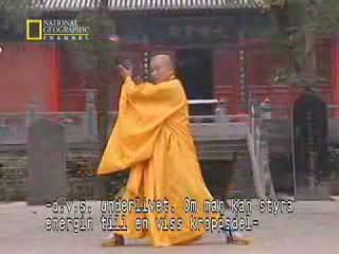 True Power of Shaolin Kung Fu