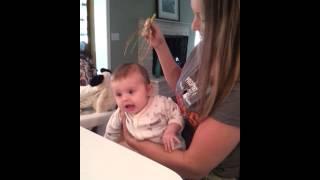 getlinkyoutube.com-Baby tickle head massage. Giants fan!