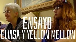 getlinkyoutube.com-Ensayo Yellow Mellow y Elvisa   Club Media Fest