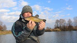 getlinkyoutube.com-Odległościówka / metoda na wietrzny dzień i trudne ryby