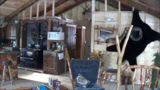 getlinkyoutube.com-THE BACKWOODS CABIN. Episode 18. Interior Stone, Worksop, Outhouse.
