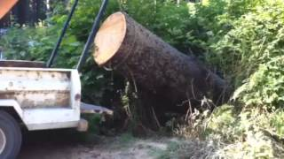 getlinkyoutube.com-Lewis Winch lifts massive log into truck, most POWERFUL portable winch ever!!