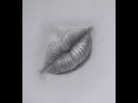How to Draw a Realistic Mouth With Pencil - How to Draw Lips
