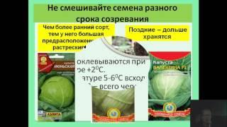 Семинар: Выращивание капусты от белокачанной до пекинской