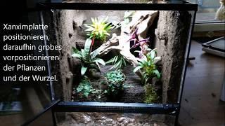 getlinkyoutube.com-Bau eines Regenwaldterrarium -Dendrobaten-Geckos- Bauen, Einrichten