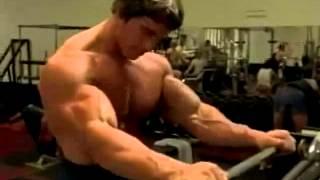 getlinkyoutube.com-Best Video of Arnold Schwarzenegger Working Out