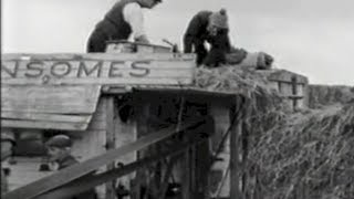Threshing filmed at the farm of Michael Coffey, Kilgobnet, Co. Kerry.