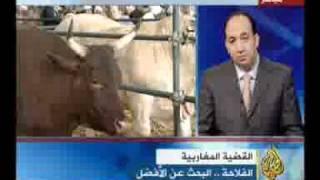 getlinkyoutube.com-HAISSOUNE_الفلاحة في المغرب _Agriculture au Maroc.avi
