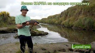 getlinkyoutube.com-Ловля КАРПА на сладкую прикормку