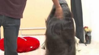 getlinkyoutube.com-indianrapunzels.com--long hair play--IR4_3_1