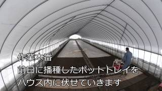 getlinkyoutube.com-エコ・たまねぎ 播種作業
