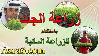 getlinkyoutube.com-ابتكار نظام لزراعة الجت مجانا للعزب في الامارات