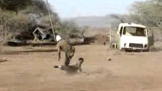 getlinkyoutube.com-Kdf basic training