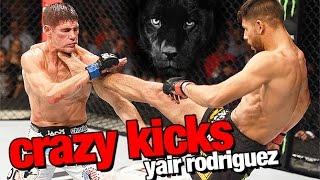 Las mejores patadas de Taekwondo por Yair Rodríguez (El pantera) en UFC