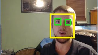 getlinkyoutube.com-Haar Cascade Object Detection Face & Eye - OpenCV with Python for Image and Video Analysis 16