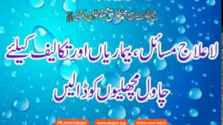 getlinkyoutube.com-Wazifa La Ilaj Masail Baimarian K Liay Chawal Fish Ko Dalain Hakeem Tariq