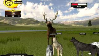 getlinkyoutube.com-Wolf Quest - Taking Down A Bull